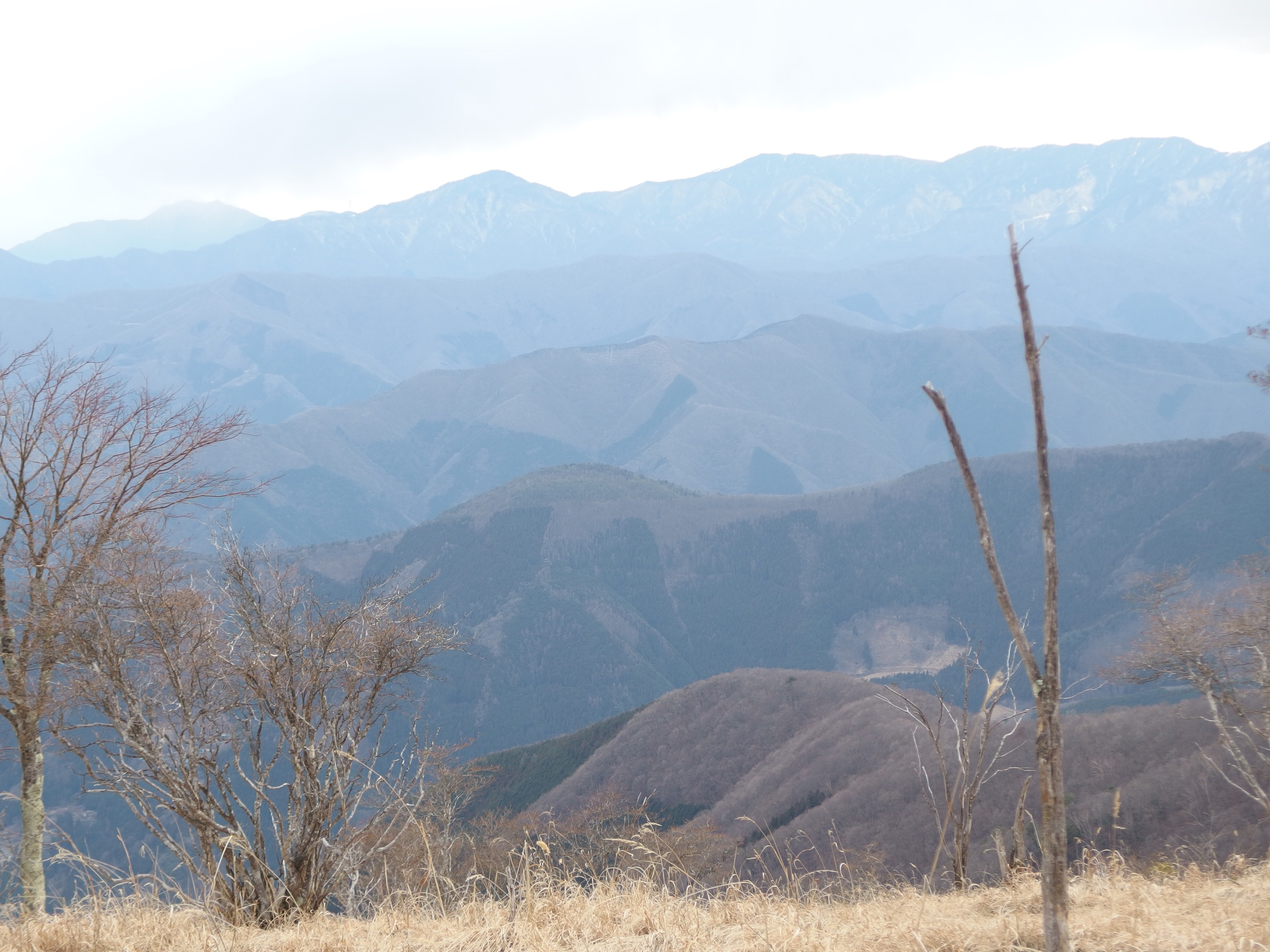 MountainRepot8-2