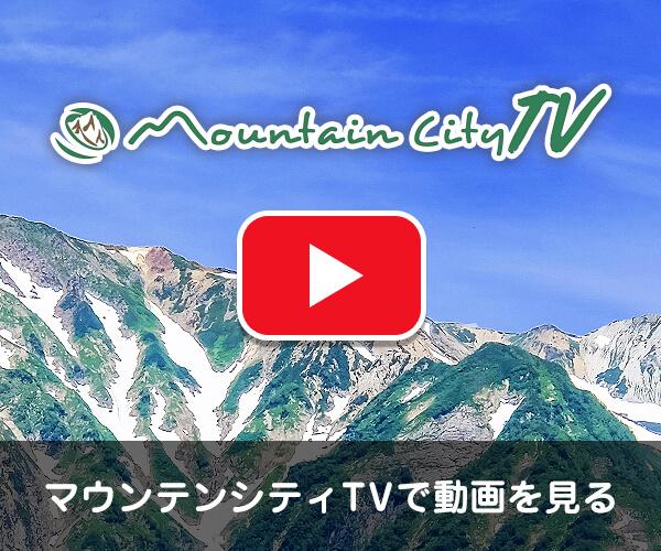 MCTV動画