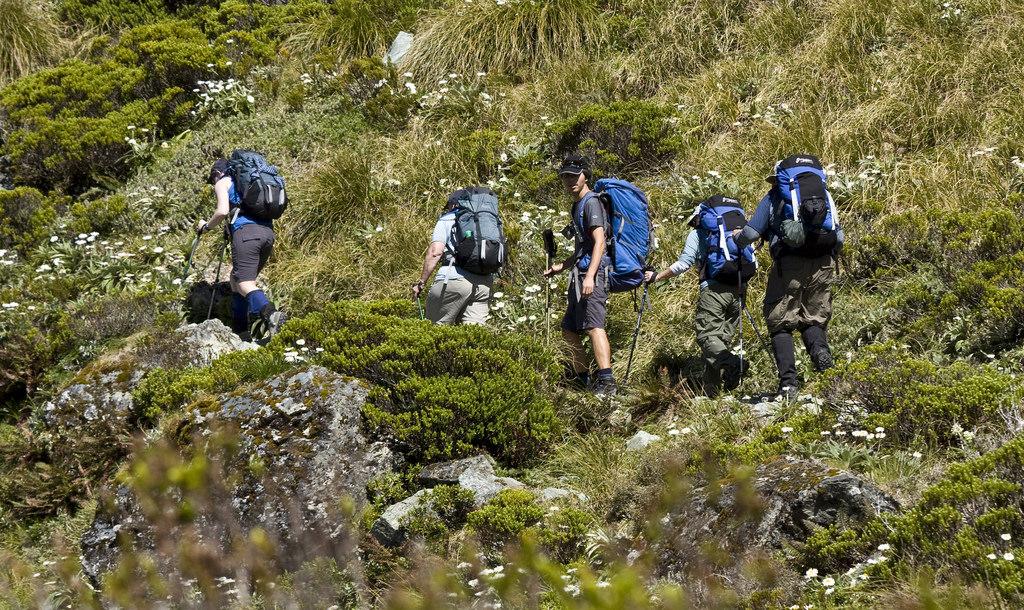 New Zealand, South Island - 2009/2010