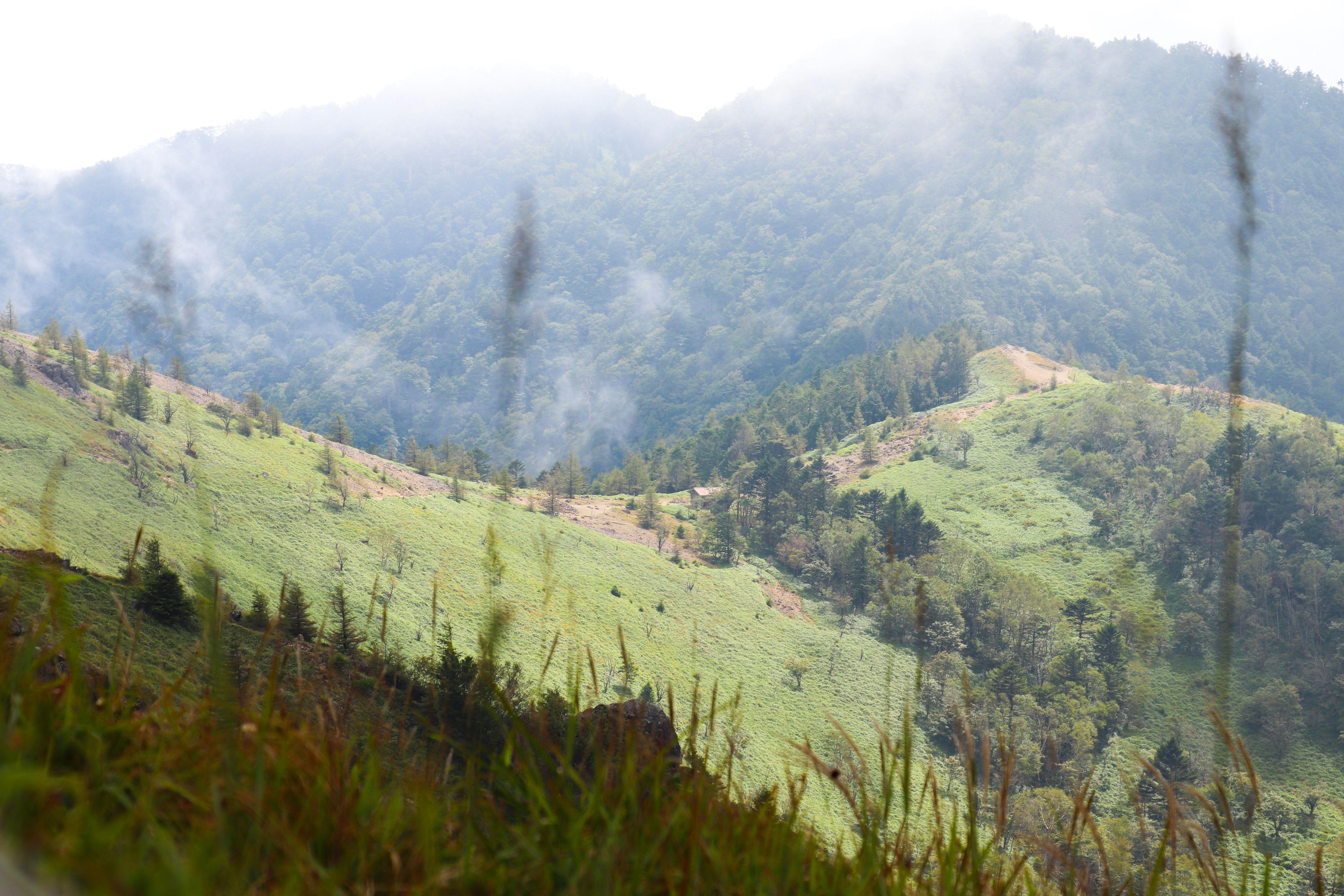 大菩薩峠から雷岩までの稜線