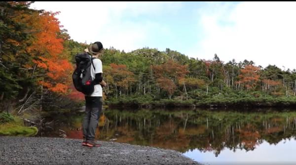 北八ヶ岳の七ツ池の写真