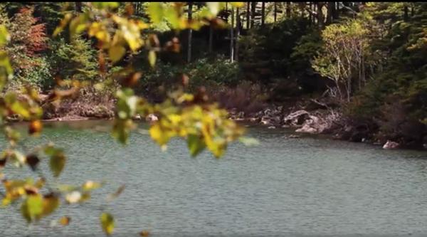 北八ヶ岳の双子池の写真